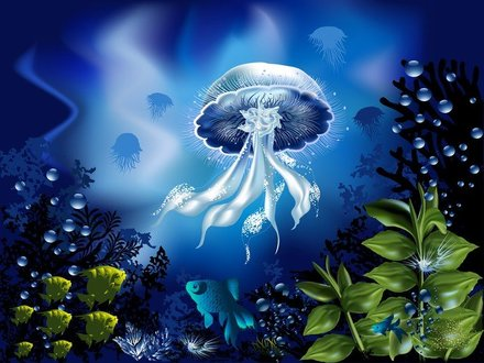 Magnificent Underwater World 04