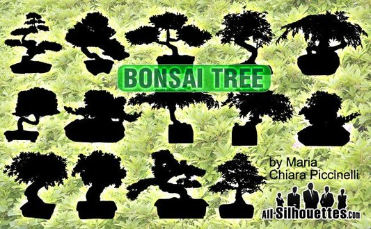 14 Vector Bonsai Tree