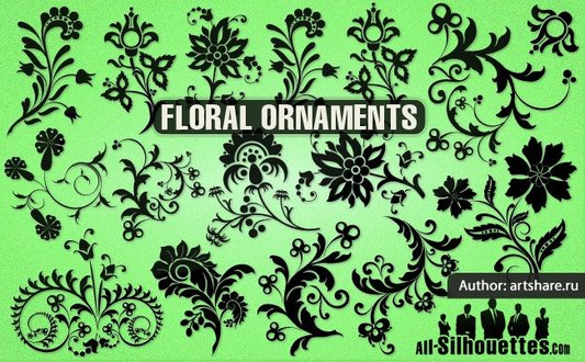16 Vector floral ornament