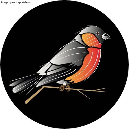 BIRD VECTOR IMG.eps
