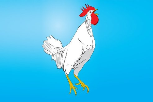 Rooster Vector Clip Art Illustration (Free)