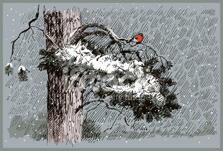 Winter,Tree,Wind,Sketch,Pattern,Cloud - Sky,Pine Tree,Bird,Falling,Snow,Drawing - Art Product,Pencil Drawing,Tree Trunk,Branch,Ilustration,Tracing,Cold - Termperature,Red,Deep,Dark,Vector,Frozen,Paintings,Bullfinch