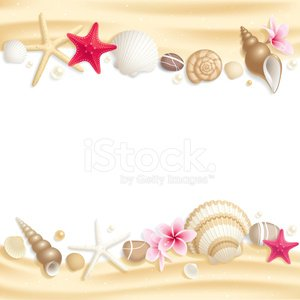 Beach,Animal Shell,Frame,Sea,Starfish,Sand,Summer,Flower,Tropical Climate,Pearl,Vector,Vacations,Pink Color,Backgrounds,Ilustration,Striped,Circle,Rock - Object,Frangipani,Pebble,Design Element,White,Curve,Nature,Cockleshell,Copy Space,Gold Colored,Nature,Mollusk,Spiral,Vector Backgrounds,Illustrations And Vector Art,Sea Life,Summer,Yellow,Red,Text Field,Animals And Pets