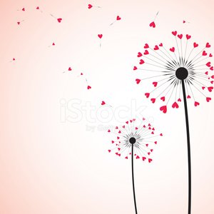 Flower,Heart Shape,Love,Dandelion,Backgrounds,Vector,Pink Color,Wind,Abstract,Ilustration,Nature,Seed,Elegance,Romance,Plant,Black Color,Blossom,Botany,Fluffy,Colored Background,Freshness,Fragility,Stem,Creativity,Softness,Ideas,Square,Pistil,Tranquil Scene,Studio Shot,overblown,No People,Fly