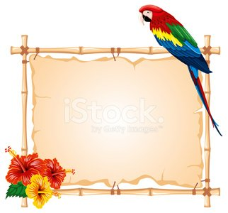 Parrot,Frame,Tropical Rainforest,Tropical Climate,Bamboo,Backgrounds,Macaw,Travel,Vector,Hibiscus,Bird,Flower,Pets,Zoo,Cartoon,Nature,Travel Backgrounds,Sitting,Ilustration,Exoticism,Isolated On White,Saturated Color,Animal,Forest,Animals And Pets,Animals In The Wild,Design Element,Summer,Color Image,East,Travel Locations,Birds,Feather,Blank,Art,Illustrations And Vector Art,Bird Watching,Parakeet,Tail