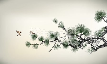 Pine Tree,Painted Image,Japanese Culture,Japan,Chinese Culture,China - East Asia,Watercolor Paints,Watercolor Painting,Branch,Tree,Evergreen Tree,East Asian Culture,Nature,Leaf,Bird,Old,Ink,Ink and Brush,Needle,Mist,Fir Tree,Beauty In Nature,Couple