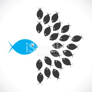 Leadership,Teamwork,Fish,Concepts,Goldfish,Sea Life,Contrasts,Standing Out From The Crowd,Order,Cartoon,Individuality,Discussion,Vector,Cute,Animal,Arrangement,Meeting,Black Color,Blue,New,Animal Themes,Success,Pattern,Animals And Pets,Group Of Animals,Friendship,Concepts And Ideas