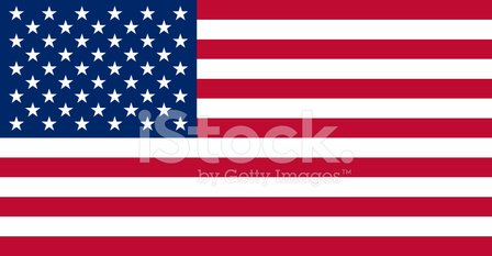 American Flag,USA,Flag,Government,Star Shape,Election,Symbol,American Culture,Freedom,Vector,Striped,The Americas,Democracy,Celebration,Blue,Red,Patriotism,Computer Graphic,Unity,Ilustration