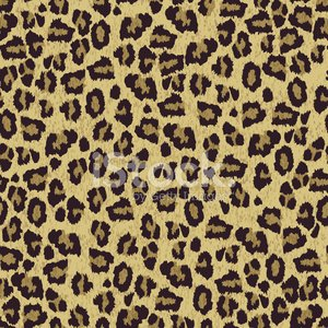 Leopard,Pattern,Fur,Fur,Track,Print,Printout,Fender Jaguar Guitar,Jaguar,Effortless,Seamless,Rebellion,Animals In The Wild,Uncultivated,Safari Animals,Tropical Climate,Safari,Backgrounds,Organization,Safari,Tiger,Wallpaper Pattern,Repetition,Reciting,Domestic Cat,Construction Frame,Africa,Striped,Zoo,Spotted,Human Hair,Textured Effect,Luxury,Undomesticated Cat,Animal Skin,Textured,Animal Hair,Abstract,Mountain Lion,Wallpaper,Real People,Ilustration,Material,Puma AG Rudolf Dassler Sport,Vector,Textile,Leather,Animal,Built Structure,Design Professional,Decor,Fashionable,Hide,Hunting,Funky,Discovery,Brown,Plan,Animals Hunting,Youth Culture,Wildlife,Nature,Tropical Rainforest,Rag,Textile Industry,Macro Film,Macro,Design,Candid,Exoticism,Fashion,Black Color,Cool