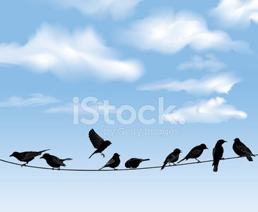 Bird,Telephone Line,Silhouette,Birds Flying in V-Formation,Perching,Flying,Branch,Birdhouse,Swallow - Bird,Hummingbird,Bluebird,Drawing - Art Product,Tree,Cloud - Sky,Cloudscape,Blue,Bird's Nest,Birdcage,Sky,Animal Nest,Animal Foot,Wing,Nature,Decoration,bird silhouette,Outdoors,Art,Ink,Feather,Animal,Design,Sparrow,Weather,Collection,Town,Tail,Dove - Bird,Computer Graphic,Black Color,Sitting,birds in flight,Fly,Birds On Wire,Beak,Vector