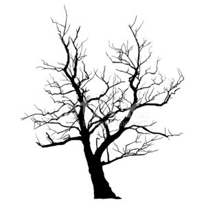 Tree,Silhouette,Spooky,Branch,Horror,Halloween,Dead Plant,Black Color,Death,Isolated,Cut Out,Vector,White,Nature,Surreal,Illustrations And Vector Art,Winter,Surrealism,Plant,Deciduous Tree,Intricacy,Clean,Season,No People,Close-up,White Background,Ilustration,Stem,Front View,Solitude,Single Object,Holidays And Celebrations,Isolated On White,Thunderstorm,Full Length,Bizarre