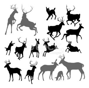 Deer,Silhouette,Stag,Back Lit,Reindeer,Animal,Antler,Jumping,Animal Themes,Forest,Animals Hunting,Hunting,Graphic Designer,Outline,Animal Head,Shadow,Vector,Fighting,Doe,Conflict,Group Of Animals,siloette,Hart,Luxury,Nature,Stencil,Running,Male Animal,Wildlife,Computer Graphic,Art,Family,Ilustration,Clip Art,Isolated,Drawing - Art Product,Fawn,siloettes,Horned,Black Color,Design Element