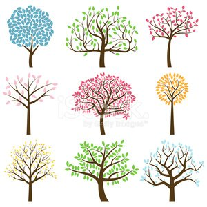 The Tree Of Life,Family Tree,Tree,Branch,Tree Trunk,Silhouette,Vector,Leaf,Season,Landscape,Landscaped,Springtime,Root,Symbol,Autumn,Origins,Sparse,Cartoon,Modern,Family,Plant,Posing,Organic,Four Seasons,Curve,Bush,Tree Isolated,Isolated,Branch Tree,Nature,Tree Vector,forest trees,Branch With Leaves,Lush Foliage,Weather,Design Element,Summer,Design,Forest Landscape,Forest,foliagé