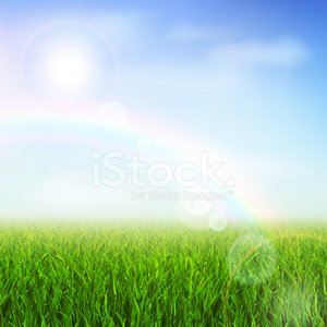 Grass,Sky,Grass Area,Lawn,Field,Sunlight,Summer,Landscape,Sun,Flower,Vector,Front or Back Yard,Heaven,Environmental Conservation,Herb,Meadow,Beauty In Nature,Ilustration,Tranquil Scene,Green Color,Concepts And Ideas,Life,Sunbeam,Cloud - Sky,Rural Scene,Blue,Non-Urban Scene,Multi Colored,Rainbow,Weather,Leaf,Springtime,Floral Pattern,Nature,Outdoors,Ornamental Garden,Season,Pattern,Growth,Herbal Medicine,Clear Sky,Sunny,Shiny,Stem,Backgrounds,Lush Foliage,Staring,Horizon Over Land