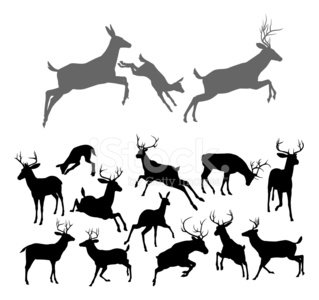 Deer,Stag,Silhouette,Back Lit,Reindeer,Outline,Jumping,Running,Hunting,Conflict,Antler,Animal Head,Fighting,Animal,siloettes,Arguing,Vector,Black Color,Doe,Love,Ilustration,Drawing - Art Product,Horned,Group Of Animals,Nature,Fawn,Computer Graphic,Clip Art,Animal Themes,Shadow,Isolated,Hart,Family,Stencil,Wildlife,Backgrounds,Male Animal,Design Element,siloette