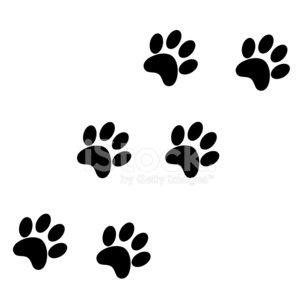 Domestic Cat,Paw,Undomesticated Cat,Dog,Track,Footprint,Cats,Backgrounds,Print,Bear,Deutsche Mark Sign,German Deutschemarks,Silhouette,Tiger,Cartoon,Scar,Back Lit,Symbol,Computer Icon,Pets,Tiger Beer,Printout,Animal,Puppy,Tracing,Human Foot,Foot,Art,Steps,Ilustration,Painted Image,Pattern,Multiple Image,Effortless,Seamless,Hunting,Pulse Trace,Rubber Stamp,Image,Sign,Animal Themes,Continuity,Discovery,Cutting,Hound,Design Professional,Image Sequence,Wildlife,Kitten,Textured,Remote,Elegance,Caucasian Ethnicity,Isolated,White,Shape,Clip,Claw,Abstract,Decoration,Art Product,Textured Effect,Computer Graphic,Style,Design,Twin