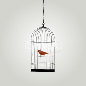 Birdcage,Bird,Depression - Sadness,Hope,Cage,Freedom,Sadness,Loneliness,Red,Pattern,Ideas,Concepts,Symbol,Art,Flying,Swallow - Bird,Solitude,Vector,Retro Revival,Tail,Wing,Dirty,Design Element,Decoration,Feather,Print,Isolated,Old,Design,Remote,Animal,Copy Space,Displeased,Sparrow