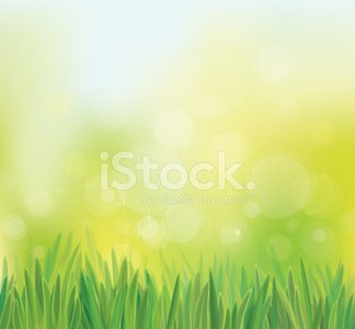 Landscape,Backgrounds,Nature,Vector,Summer,Scenics,Illuminated,Grass,Bright,Yellow,Sky,Weed,Easter,Green Color,Season,Ilustration,Plant,Sun,Design,Green Background,Sunny,Grass Area,Springtime,Environment,Defocused,Sunlight,Glowing,Shiny