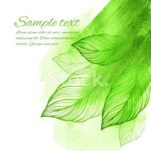 Botany,Watercolor Paints,Watercolor Painting,Pattern,Tree,Nature,Color Image,Spray,Blob,Splashing,Paint,Design Element,Green Color,Leaf,Springtime,Bush,Transparent,Drawing - Art Product,Vector,Environmental Conservation,Textured,Floral Pattern,Ilustration,Backdrop,Art Product,Beautiful,Wallpaper Pattern,Backgrounds,Plant,Decoration,Design,Season,Beauty In Nature,Painted Image,Summer,Textured Effect,Decor,Ornate,Abstract,Stained,Art,Bright,Modern,hand drawn,Acrylic Painting