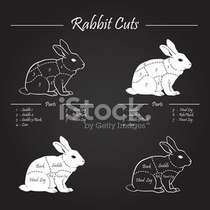 Rabbit - Animal,Rabbit Meat,Butcher,Butcher's Shop,Meat,Restaurant,Easter,Tasting,Raw Food,English Culture,Barbecue,Cutting,Groceries,Freshness,Backgrounds,Silhouette,Ilustration,Animals In The Wild,Vector,UK,Red,Cross Section,Steak,Dieting,Classic,Color Image,Healthy Lifestyle,Blackboard,Domestic Kitchen,Conspiracy,Healthy Eating,White,Livestock,Refreshment,Elegance,Barbecue Grill,Greeting,Vehicle Part,Commercial Kitchen,Animal,Kitchen,Supermarket,Animal Leg,British Culture,Raw,Isolated,Food,Domestic Animals,Brunch,Blackboard Background,Colors,Simplicity,Hare,Diagram,Cooking
