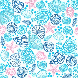 Pattern,Summer,Animal Shell,Coastline,Beach,Seamless,Water,Seashell,Sea,Animals In The Wild,Nautical Vessel,Mollusk,Vector,Prepared Shellfish,Shape,Cockleshell,Aquarium,Art,Backgrounds,Conch Shell,Animal,Computer Graphic,Abstract,Life,Underwater,Design Element,Eternity,Ilustration,Drawing - Art Product,Ornate,Design,Isolated,Nature,Starfish,Blue,Star Shape,Seafood,Single Object,Black Color
