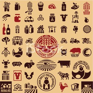 Livestock,Symbol,Computer Icon,Tractor,Chicken - Bird,Barn,Wheat,Corn,Farmer,Sign,Agriculture,Sheep,Cow,Vector,Farm,Food,Meat,Warehouse,Pork,Label,Honey,Cereal Plant,Field,Seed,Eggs,Landscaped,Hen,Harvesting,Pig,Market,Organic,House,Poultry,Agricultural Machinery,Postage Stamp,Formal Garden,Rooster,Lamb,Insignia,Cattle,Cockerel,Milk,Work Tool,agronomy,Combine Harvester,Animal Themes,Cooperation,Equipment
