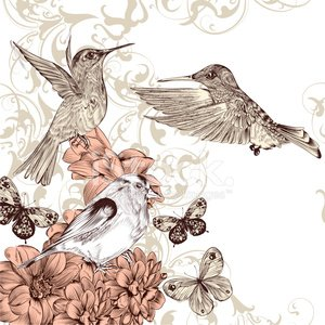 Hummingbird,Old-fashioned,Bird,Antique,Flying,Drawing - Activity,Vector,Ilustration,Animal Hand,Retro Revival,Intricacy,Silhouette,Posing,Ornate,Computer Graphic,Style,Paper Currency,Elegance,Invitation,Swirl,Pattern,Beauty,Decoration,Celebration,Design,Art,Rose - Flower,Cute,Typescript,Part Of,Nostalgia,Flourish,Decor,Nature,Wing,Flower,Fly,Creativity,Old,Shape,Wallpaper