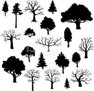 Computer Graphic,Pine Tree,Forest,Silhouette,Bush,Grove,Symbol,Tree Trunk,Variation,Nature,Group of Objects,Crown,Design Element,Copse,Plant,Painted Image,Backgrounds,Biology,Abstract,Isolated,Spruce Tree,hand drawn,Single Object,Set,Organic,Doodle,Cartoon,Flower Bed,Drawing - Art Product,Design,Botany,Collection,Colors,Vector,Simplicity,Season,Leaf,Image,Fir Tree,Shape,Tree,Branch,Summer,Ilustration