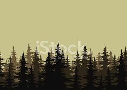 Pine Tree,Silhouette,Forest,Evergreen Tree,Tree,Pine,Woodland,Coniferous Tree,Branch,Seamless,Backgrounds,Dark,Landscaped,Landscape,Black Color,Fir Tree,Plant,Lush Foliage,Night,Season,Gray,Horizontal,Scenics,firtree,Rural Scene,Outline,Repetition,Pattern,Outdoors,Environment,Cut Out,Wallpaper Pattern,Growth,Nature,Environmental Conservation,Spruce Tree,Vector