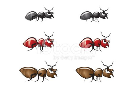 Ant,red ant,Black Ant,Fire Ant,Brown Ant,Cheerful,Happiness,Insect,Ilustration,Cartoon,Animated Cartoon