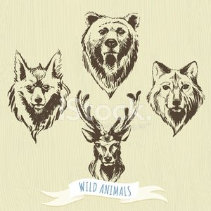 Sketch,Wolf,Drawing - Activity,Deer,Hipster,Woodland,Wood - Material,Human Hand,Portrait,Fine Art Portrait,Animal Head,Animal,Fox,Forest,Frame,Zoo,Retro Revival,Winter,Doodle,Animal Themes,Hunting,Animals Hunting,Old-fashioned,Stroking,Grunge,Textured,Human Face,Symbol,Award Ribbon,Pencil Drawing,Computer Graphic,Painted Image,Tattoo,Back Lit,Set,1940-1980 Retro-Styled Imagery,Silhouette,Computer Icon,Pattern,Vector,Ribbon,Label,Drawing - Art Product,Fur,Sign,Wildlife,Nature,Ilustration,Placard,Paintbrush,Art,Collection,Animals In The Wild,Ribbon,Design,Discovery,Banner,Textured Effect,Rebellion,Nordic Countries,Danger