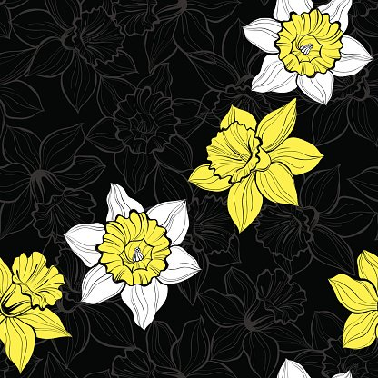 Abstract,Celebration,Flower,Daffodil,Art And Craft,Sketch,Plant,Art,Sign,Painted Image,Beauty,Petal,Collection,Beautiful People,Illustration,Nature,Postcard,Birthday,Symbol,Inviting,Outline,Easter,Invitation,Seamless Pattern,Backgrounds,Public Park,Blossom,Floral,Bouquet,Decor,Vector,Design,Drawing - Art Product,Pattern,Floral Pattern,White Color,Black Color,Yellow