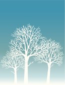Tree,Winter,Silhouette,Snow,Branch,Forest,White,Vector,Backgrounds,Back Lit,Three Objects,Wood - Material,Sparse,Holiday,Three Animals,Blue,Three People,Simplicity,Frost,Nature,Ilustration,Frozen,Day,Standing,Backdrop,Cold - Termperature,vector background,Horizontal,December,Nature,Plants,Travel Locations