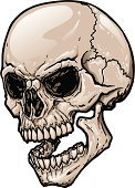 Human Skull,Halloween,Vector,Evil,Death,Horror,Dead Person,Human Teeth,Ilustration,Black Color,Terrified,Rotting,Shock,People,Halloween,Isolated Objects,Fear,Beige,Brown,Holidays And Celebrations