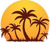 Caribbean,Island,Palm Tree,Coconut Palm Tree,Beach,Tree,Sunset,Cartoon,Silhouette,Tropical Climate,Art,Back Lit,Desert Island,Clip Art,Caribbean Sea,Sun,Vector,Idyllic,Drawing - Art Product,Vacations,Sea,Summer,Ilustration,Summer,Holidays,Travel Locations,Illustrations And Vector Art,Vector Icons,Nature