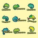 Square,Office,Brand,Animal,Vector,Branding,Chameleon,Sign,Text,Cute,Symbol,Occupation,Illustration,Reptile