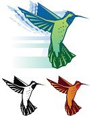 Hummingbird,Vector,Bird,Nature,Flying,Green Color,Red,White,Iridescent,Blue,Black Color,Animal,Feather,Beak,Wildlife,Birds,Vector Icons,Wild Animals,Wing,Animals And Pets,Illustrations And Vector Art