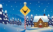North Pole,House,Polar Climate,Snow,Christmas,Sign,Landscape,Pole,Road Sign,Winter,Night,Reindeer,Rudolph The Red-nosed Reindeer,Forest,Yellow,Ice,Hill,Icicle,Vector,Pine Tree,Red,Tree,Nature,Snowy Scene,Santa's Workshop,Homes,Striped,Blue,Season,Winter,yuletide,Snowdrift,Architecture And Buildings,Sky,Holidays And Celebrations,Building Exterior