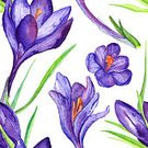 Square,No People,Art,Watercolor Painting,Watercolor Paints,Painted Image,Single Flower,Art And Craft,Flower,Crocus,Illustration,Seamless Pattern