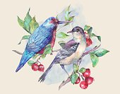 Horizontal,No People,Watercolor Painting,Bird,Branch,Illustration,Christmas