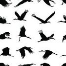 Cut Out,Square,Simplicity,Silhouette,Black And White,Back Lit,No People,Animals In The Wild,Animal,Animal Markings,Flat,Vector,Bird,Flock Of Birds,Illustration,Seamless Pattern,Stork,Nature,Animal Wildlife,Flying,White Background,Black Color,Pattern