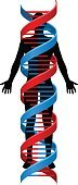 Adult,doublehelix,60500,Vertical,Panoramic,Ideas,Care,Symmetry,Change,Concepts,Females,Men,Women,Males,Silhouette,Back Lit,One Person,Editor,Concepts & Topics,Spiral,Medicine,Sign,Alternative Medicine,Healthcare And Medicine,Science,Illustration,People,Cell,The Human Body,Chromosome,Computer Icon,Symbol,Medical Test,Human Body Part,Medical Exam,Helix,Genetic Research,Doctor,Strand - South Africa,Scientific Experiment,Care,Human Cell,Helix Model,Research,Vector,DNA,Intertwined,Standing,White Background
