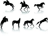 Horse,Show Jumping,Jumping,Silhouette,Horseback Riding,Running,Riding,Vector,Jockey,Animal,Sport,Thoroughbred Horse,Arabian Horse,Stallion,Standing,Group Of Animals,Mare,Reflection,Animal Sport,Extreme Sports,Farm Animals,Sports And Fitness,Animals And Pets