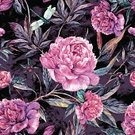 Square,No People,Painted Image,Petal,Illustration,Nature,Leaf,Flower Head,Single Flower,Peony,Seamless Pattern,Decoration,Backgrounds,Pattern,Floral Pattern,Purple,Pink Color,Green Color