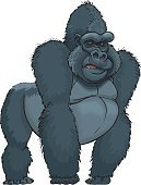 Gorilla,Ape,Primate,Animals In The Wild,Wildlife,Vector Cartoons,Wild Animals,Illustrations And Vector Art,Animals And Pets,Strength