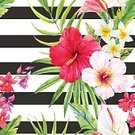 Square,No People,Plant,Hibiscus,Summer,Illustration,Nature,Leaf,Anthurium,Frangipani,Seamless Pattern,Bird of Paradise - Plant,Decoration,Botany,Backgrounds,Orchid,Vector,Multi Colored,Pattern