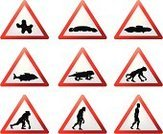 Evolution,Triangle,Progress,Monkey,People,Development,Symbol,Reptile,Silhouette,Sign,Ape,Growth,Journey,Transportation,Clip Art,Vector,Red,Road Sign