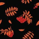 Square,Chance,No People,Plant,Ornate,Illustration,Nature,Leaf,Berry Fruit,Berry,Autumn,Seamless Pattern,Decoration,Botany,Season,Berry,Backgrounds,Rowanberry,Vector,Red,Pattern,Black Color