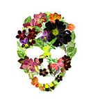 Vertical,Flower,Art And Craft,Art,Painted Image,Ornate,Illustration,Human Skull,Scull,Watercolor Painting,Watercolor Paints,Sculling,Human Skeleton,Floral Pattern
