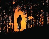 Cycling,Bicycle,Silhouette,Mountain Biking,Forest,Mountain Bike,Mountain,Sunset,mtb,Woodland,Cyclist,Tree,Vector,Cycle,People,Sport,Motion,Action,Speed,One Person,Exercising,Profile View,Recreational Pursuit,Activity,Physical Activity,Male,Black Color,Orange Color,Extreme Sports,Athlete,Outdoors,Unrecognizable Person,The Human Body,Horizontal,Individual Sports,Adult,Healthy Lifestyle,Illustrations And Vector Art,Sports And Fitness